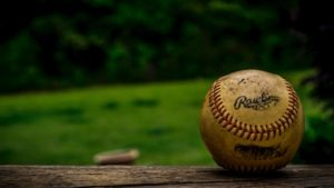 baseball sitting on a fence